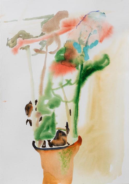 Akvarell 50x35cm