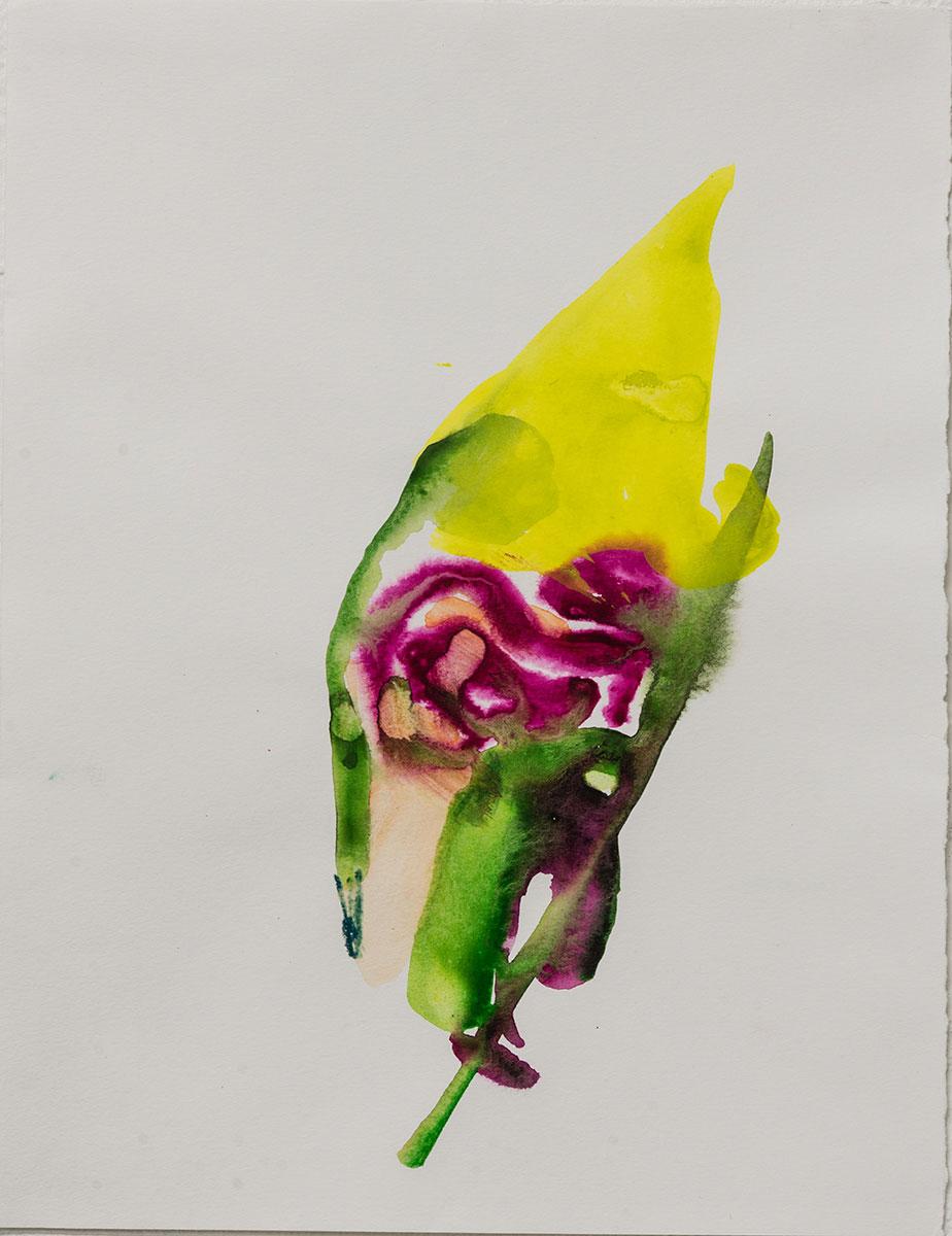 Akvarell 37x30 cm